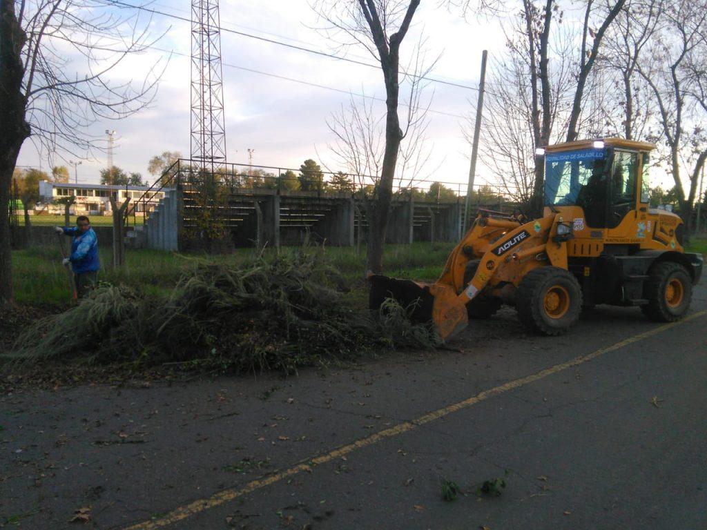 Limpieza de los grandes volúmenes de ramas