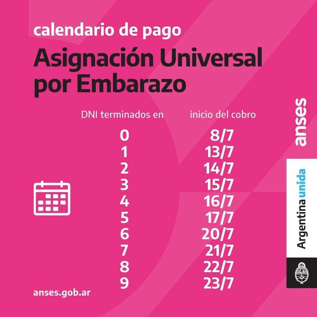 Calendario de Pago - Asignación Universal por Embarazo