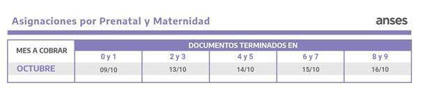 Calendario de pagos de Octubre asignaciones Prenatal y Maternidad